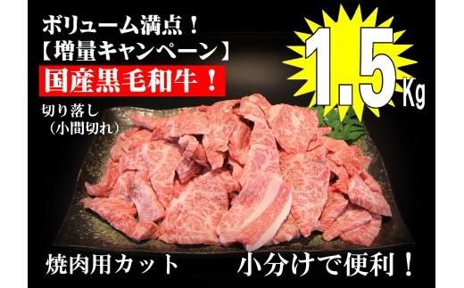 ドカンと1.5kg【国産黒毛和牛切り落とし焼肉用】A-214
