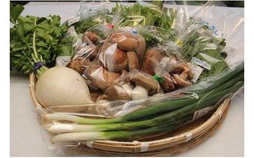 n1:野菜おまかせ詰め合わせ