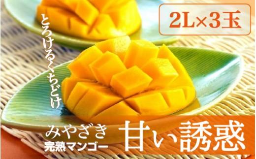 Q-3 完熟マンゴー「甘い誘惑」2Lサイズ3玉