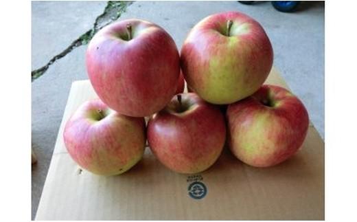 17. リンゴ