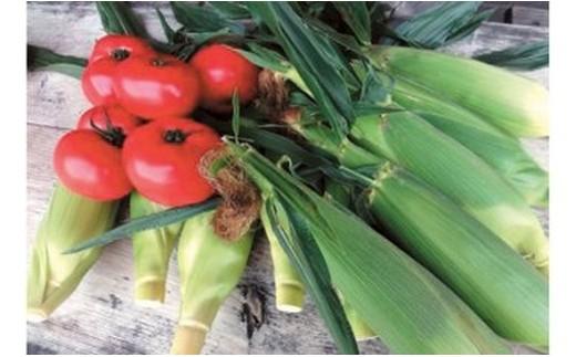 3. 高原野菜(トウモロコシ)