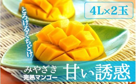 Q-4 完熟マンゴー「甘い誘惑」4Lサイズ2玉