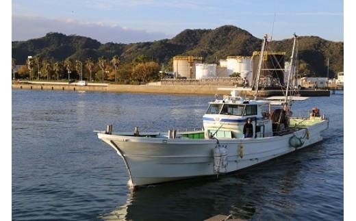 【100-1】3名様限定 底引き網漁業体験
