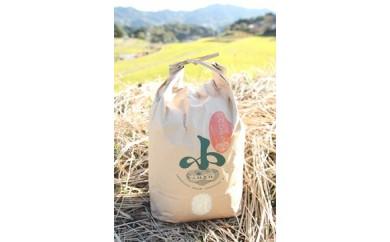 小林農林のお米(ヒノヒカリ精米)10kg