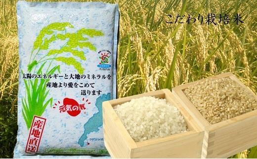 30A034 こだわり栽培米 コシヒカリ(白米・玄米)5kg