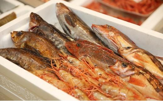 [№5685-0156]新鮮!天然!にかほ市産旬の魚詰め合わせ(切り身)