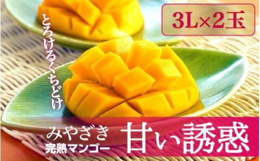 Q-2 完熟マンゴー「甘い誘惑」3Lサイズ2玉