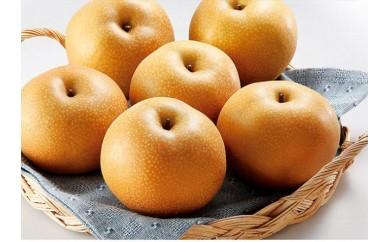 和歌山県産 樹上完熟梨 約4kg