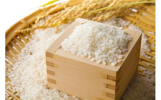 [№4631-1344]【30年度新米10kg】北山森林ボランティア会のお米