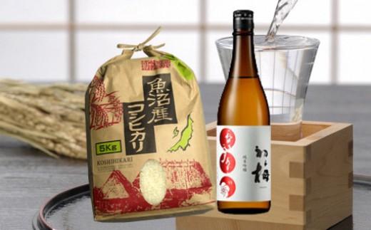 魚沼産コシヒカリ5kg&純米吟醸酒初梅720ml