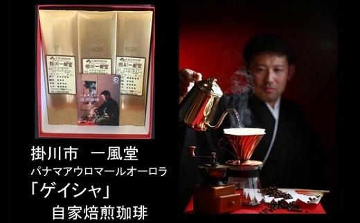 193 至福の珈琲 パナマベルリナベイビー「ゲイシャ」80g×3袋(ギフト箱入)