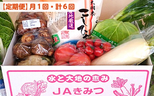 ☆【月1回・計6回】野菜詰め合わせ&天羽米コシヒカリ5kg