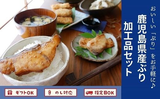 062-2-04 おいしい「ぶり」をお手軽に♪鹿児島県産ぶり加工品セット