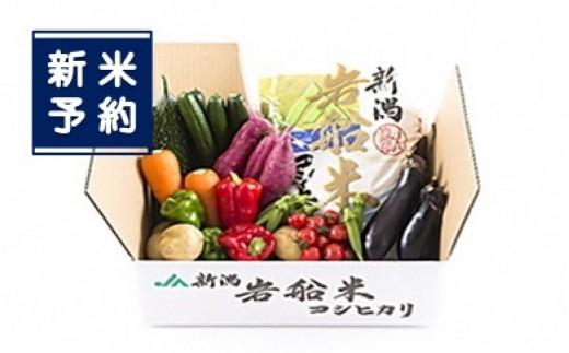 【新米予約】B119 岩船米コシヒカリと季節の野菜セット2