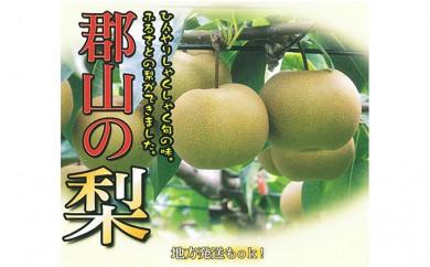 [№5902-0084]【ご家庭向け】梨:幸水 10kg相当(玉数おまかせ) 郡山市産