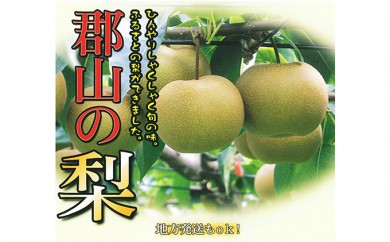 [№5902-0083]【特秀】30年度産 梨:豊水 5kg相当(12~14玉) 郡山市産
