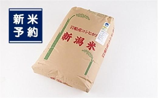 【新米予約】G108 特別栽培米コシヒカリ玄米900kg