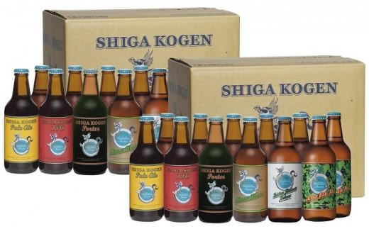 [№5658-0104]玉村本店 志賀高原ビール24本セット