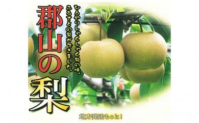 [№5902-0082]【特秀】30年度産 梨:幸水 5kg相当(14~16玉) 郡山市産