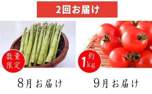 [№5871-0154]今が旬!今金産野菜2回お届け