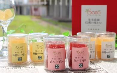 [№5707-0248]旬の果実の味わいを!佐藤果樹園ハードゼリーアラカルト