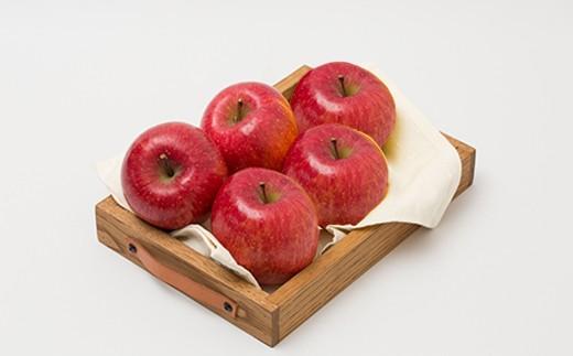 【予約受付】70P3401 りんご「ふじ」10kg【70P】