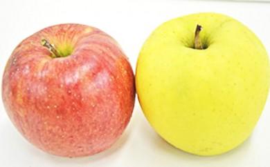[№5764-0301]鹿角りんごシナノスイートとぐんま名月の詰合せ 約5kg 【佐藤 秀果園】
