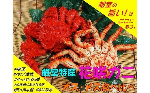 CA-05001 【北海道根室産】花咲ガニオスメス食べ比べ3~4尾 チルド発送