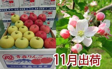 [№5898-0077]11月 贈答クラス津軽のりんご約5kg2種以上16~20玉(品種おまかせ)