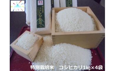 あわら市産コシヒカリ特別栽培米 (1kgk✕4)
