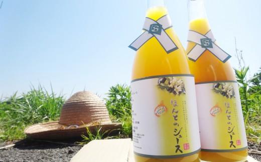 【限定50個】ほんとのみかんジュース(減農薬・有機肥料栽培)