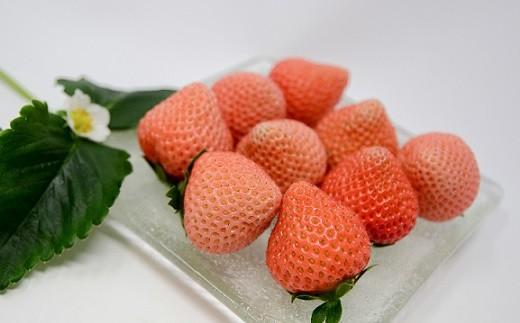 やわらかくジューシーな果肉と桃の風味が特徴の桃薫(とうくん)をお届けします。