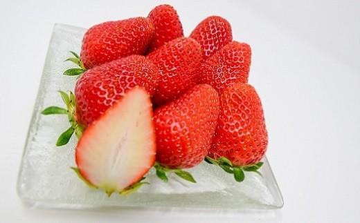 カットするとフチの赤と果肉の白のコントラストがきれいな品種です。