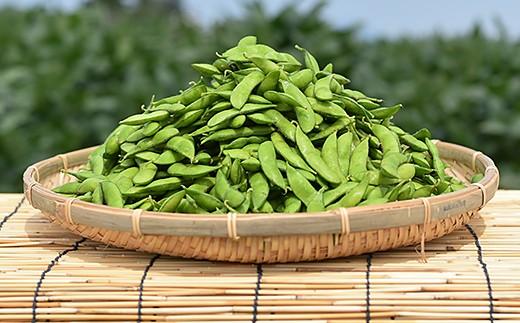長岡産枝豆【1.5kg×3回お届け】食べつくし定期コース