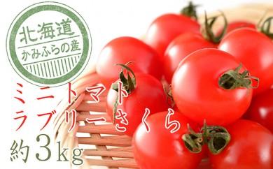 [№5543-0067]もぎたてミニトマト【ラブリーサクラ】3kg≪北海道上富良野産≫