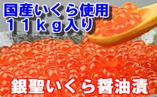 [02-301]期間・数量限定! 前浜産 銀聖いくら醤油漬(500g×12箱セット)