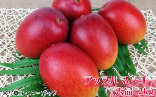 沖縄県産マンゴー 秀品 2kg