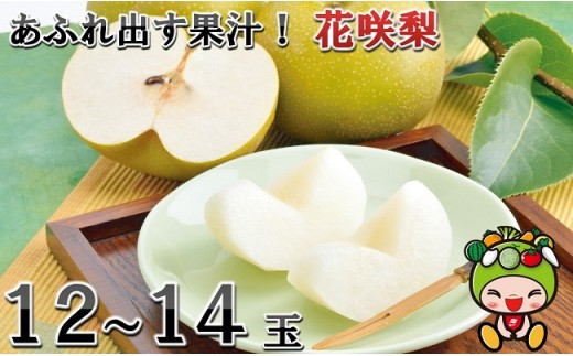 [A-1003] 「花咲梨」12~14玉 シャキっとした食感♪あふれ出す果汁!