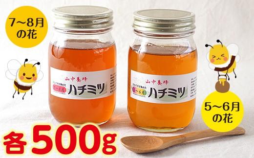 ◇【自然のまま】富津産ハチミツ食べ比べ500g×2本