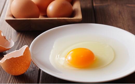 [№5666-0130]髙橋ファームの丈夫卵