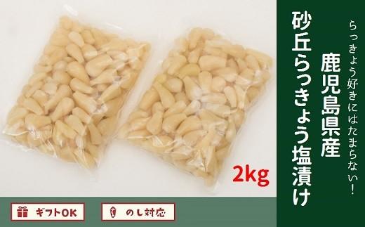 017-05 らっきょう好きにはたまらない!鹿児島県産砂丘らっきょう塩漬け2キロ