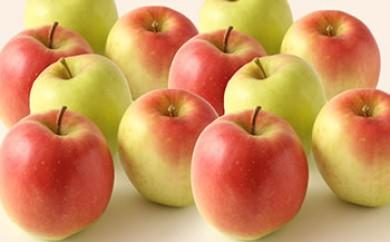 酸味と甘さが絶妙なムツ林檎 8個~10個×2箱(さとう果樹園)