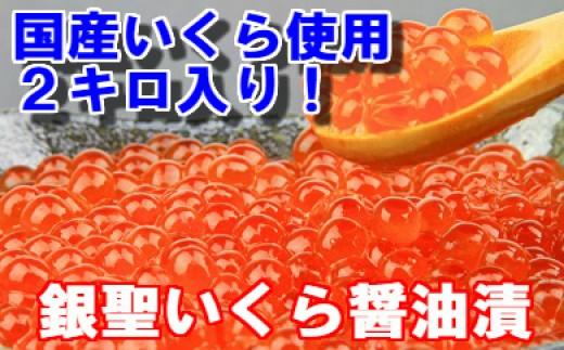 [02-299]期間・数量限定! 前浜産 銀聖いくら醤油漬(500g×4箱セット)