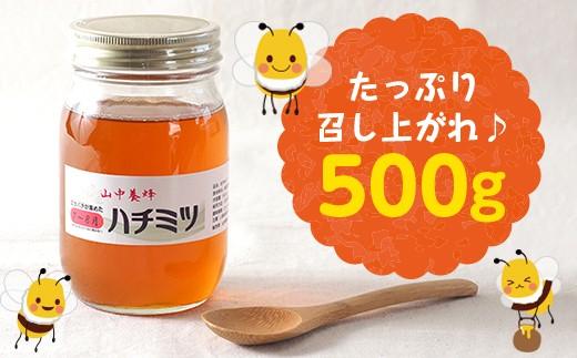 ☆【自然のまま】富津産ハチミツ500g(7〜8月の花)