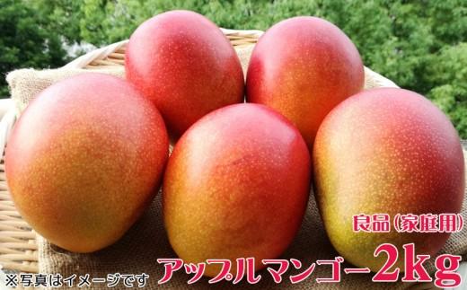 沖縄県産マンゴー 良品(家庭用)2kg