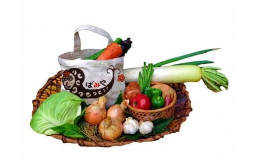 A29-16季節の手作り野菜セット(栽培期間中に農薬を使用していません)