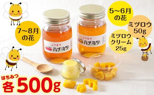 ◇【自然のまま】富津産ハチミツ500g×2本+ミツロウ