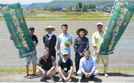 【6ヶ月連続お届け】北魚沼産コシヒカリ(長岡川口地域)10kg【H30年産】