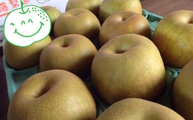 [№5672-0202]白岡・下野田 斉藤さんちの美味しい梨5kg