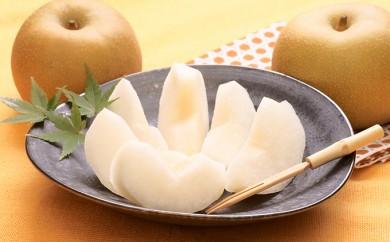 [№5672-0205]利根川さんが作った朝もぎ梨5kg